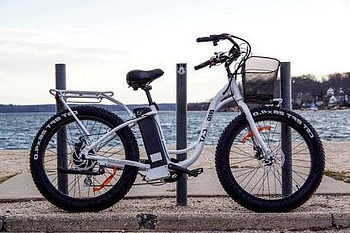 Long Beach Cruiser XL 500